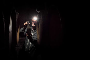 Cave of Fermented Dreams. Matt Giraud, direction, videography, editorial
